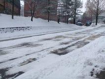 Il percorso o il vicolo o il passaggio pedonale vuoto in viale di legno con due file degli alberi parteggia per neve da entrambi  Immagine Stock Libera da Diritti