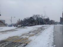 Il percorso o il vicolo o il passaggio pedonale vuoto in viale di legno con due file degli alberi parteggia per neve da entrambi  Fotografia Stock