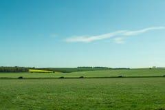 Il percorso a Stonehenge - sito del patrimonio mondiale dell'Unesco Fotografia Stock Libera da Diritti