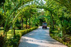 Il percorso sul sito in Tailandia Fotografia Stock