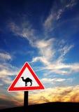 Il pericolo del deserto Fotografia Stock