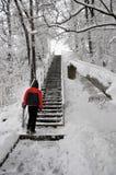 Il pericolo di inverno fotografie stock