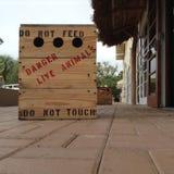 Il pericolo, non alimenta la scatola di legno di animale vivo fotografia stock