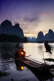 Il pescatore cormant nel fiume del Li Immagine Stock Libera da Diritti