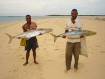 Il pescatore del Mozambico locale ha preso Baracudas con le lenze a mano fotografia stock