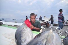 Il pescatore sta caricando il tonno al mercato dei frutti di mare Immagini Stock