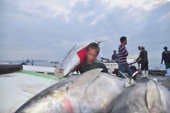 Il pescatore sta caricando il tonno al mercato dei frutti di mare Fotografia Stock Libera da Diritti