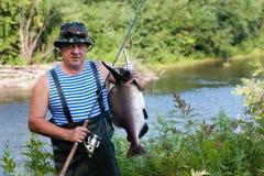 Il pescatore tiene il salmone rosa maschio preso è stato preso nel fiume Fotografia Stock