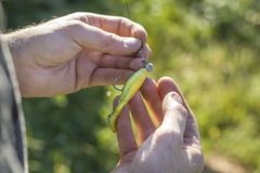 Il pescatore tiene la canna da pesca e l'esca di filatura Immagine Stock