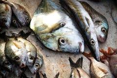 Il pesce è per vendita immagini stock