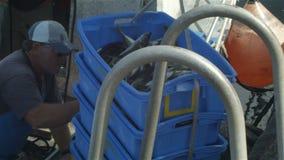 Il pesce del pescatore dell'industria di pesca professionale prende la barca ai bacini di pesca stock footage
