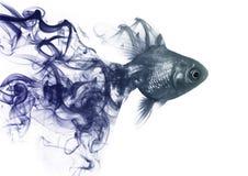Il pesce dell'oro dal fumo fotografia stock