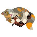Il pesce di abbracci del gatto Fotografie Stock Libere da Diritti