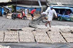 Il pesce di mare è asciugato al sole vicino su fotografia stock libera da diritti