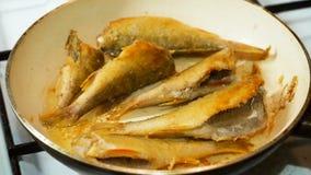 Il pesce ha fritto in olio caldo in una padella stock footage