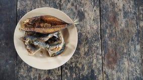 Il pesce locale ha fritto, alimento tailandese locale in del sud della Tailandia Fotografia Stock Libera da Diritti