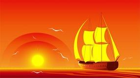 Il pesce vela del Pacifico. Fotografie Stock Libere da Diritti