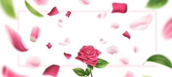 Il petalo rosa vago vettore, lascia il fondo 3d royalty illustrazione gratis