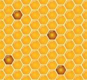 Il pettine ambrato brillante del miele ed il modello senza cuciture delle api progettano Vettore illustrazione di stock