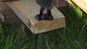 Il pezzo di bordo di legno è segato fuori da una sega elettrica archivi video