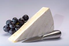 Il pezzo di francese morbido ha maturato il brie bianco del formaggio del latte di vacca della muffa pro fotografie stock libere da diritti