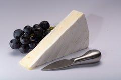 Il pezzo di francese morbido ha maturato il brie bianco del formaggio del latte di vacca della muffa pro immagini stock