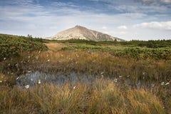 Il più alta montagna della repubblica Ceca - Snezka Immagine Stock