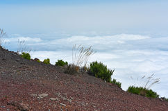 Il più alta montagna Pico Ruivo dell'isola del Madera Immagine Stock