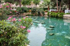 Il piacere antico - stagno naturale caldo in Turchia fotografia stock