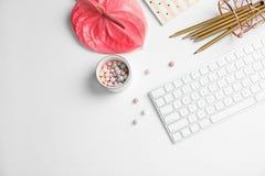 Il piano creativo pone la composizione con la tastiera tropicale del fiore, della cancelleria e di computer fotografie stock libere da diritti