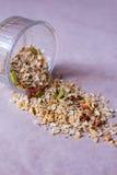Il piatto dei muesli casalinghi con i fiocchi di granturco, bacche di Goji, semi di chia, ha liofilizzato l'albicocca, semi di gi fotografie stock