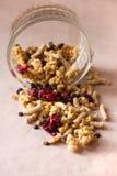 Il piatto dei muesli casalinghi con i fiocchi di granturco, crusca, gocce di cioccolato, ha liofilizzato la ciliegia fotografia stock