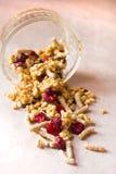Il piatto dei muesli casalinghi con i fiocchi di granturco, crusca, gocce di cioccolato, ha liofilizzato la ciliegia immagine stock