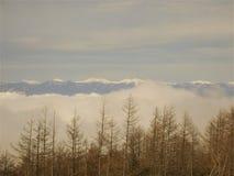 Il picco di cielo blu nell'inverno sulla montagna di Fuji nel Giappone Neve superiore della montagna di Fuji la bella potrebbe 4? immagine stock