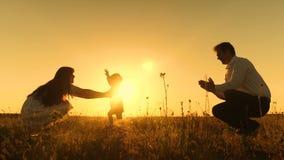 Il piccolo bambino con la sua famiglia impara camminare al tramonto Movimento lento archivi video