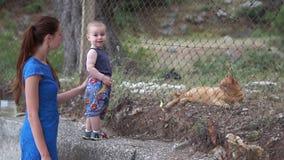 Il piccolo bambino con sua madre esamina felicemente il gatto rosso dietro il recinto video d archivio