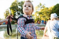 Il piccolo bambino sta sedendosi in un passeggiatore Fotografia Stock