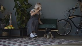 Il piccolo cane con il proprietario passare un giorno a casa che gioca e che si diverte archivi video