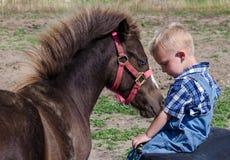 Il piccolo cavallo ama il suo ragazzo Fotografia Stock