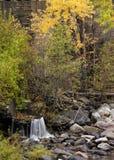 Il piccolo corso d'acqua conduce al fiume Immagine Stock Libera da Diritti