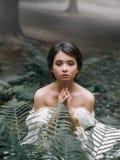 Il piccolo elfo di legno neonato sta elemosinando piet?, lo spirito come simbolo di timore ed il pericolo prima della gente crude fotografia stock libera da diritti