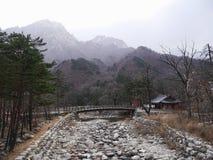 Il piccolo ponte nel parco nazionale di Seoraksan Immagine Stock