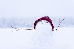 Il piccolo pupazzo di neve fotografia stock libera da diritti