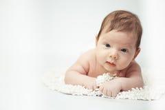 Il piccolo ritratto del bambino Immagine Stock Libera da Diritti