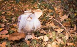 Il piccolo uomo magico con un cucchiaio di legno nel legno di autunno vicino Fotografia Stock