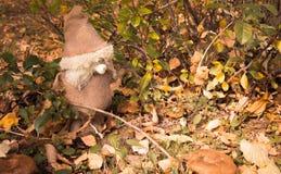 Il piccolo uomo magico da un licenziamento nel legno di autunno sul caduto su Fotografia Stock Libera da Diritti