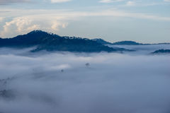 Il piccolo villaggio in nebbia, alcune dove vicino a Dalat, Vietnam Fotografia Stock