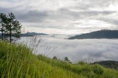 Il piccolo villaggio in nebbia, alcune dove vicino a Dalat, Vietnam Immagine Stock