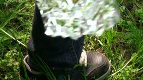 Il piede è su un fiore stock footage