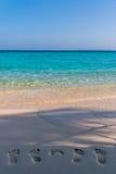 Il piede del bambino e della famiglia stampa sulla spiaggia Immagine Stock
